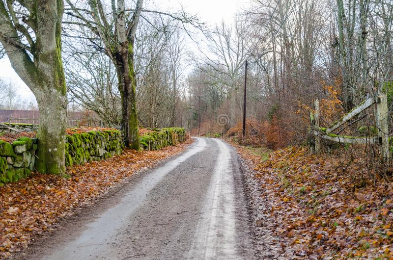 Route de gravier dans un vieux paysage rural images stock