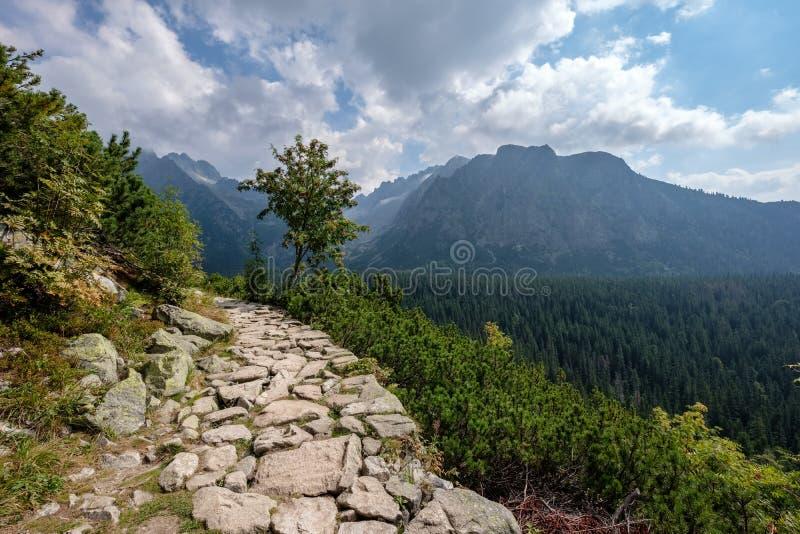 route de gravier de pays amenant aux montagnes image stock