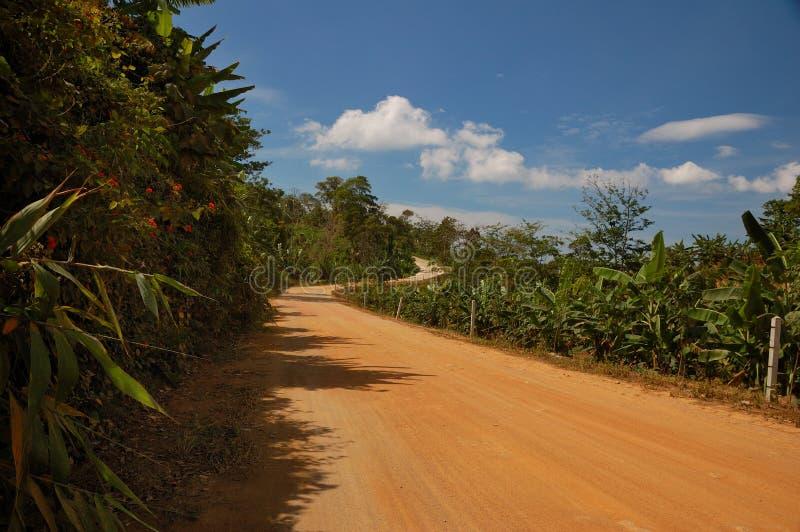route de jungle thaïe image libre de droits