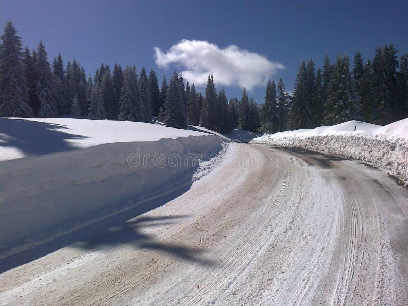 Route de l'hiver images libres de droits