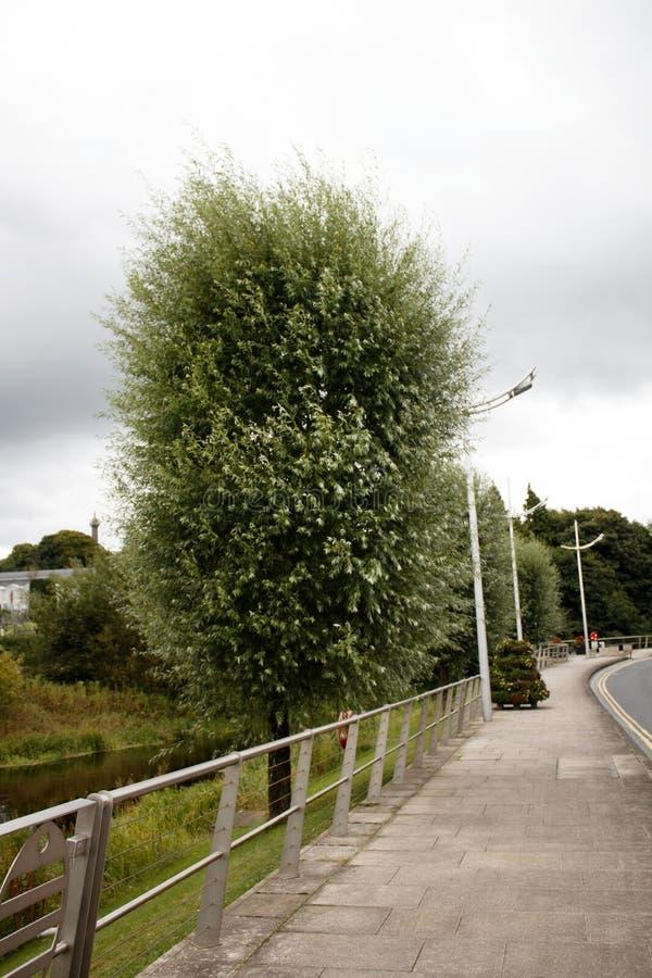 Route de la Reine Elizabeth 2, Enniskillen, Co Fermanagh, colère du nord image stock
