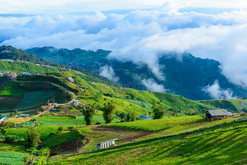 Route de montagne à (tubberk de phu) dans le pair de ressortissant de Phu Hin Rong Kla images stock