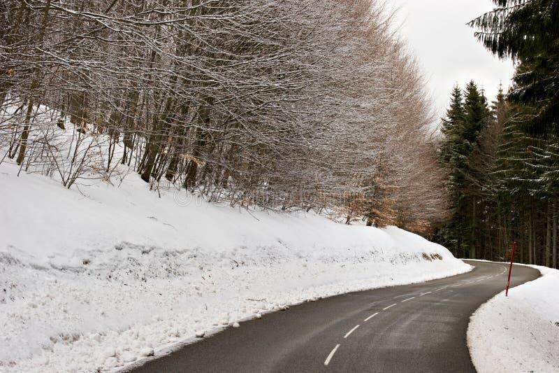 Route de montagne en hiver image stock