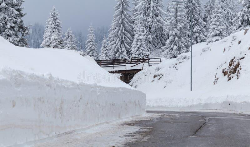 Route de montagne, Jahorina photographie stock libre de droits