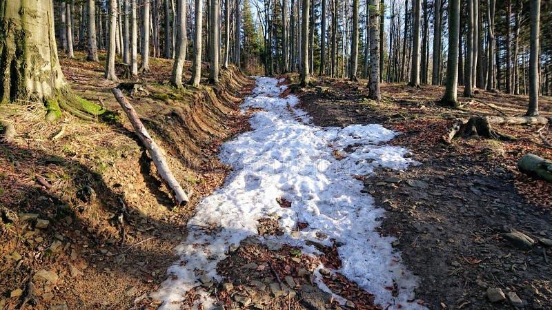 Route de montagne de Milou photos libres de droits