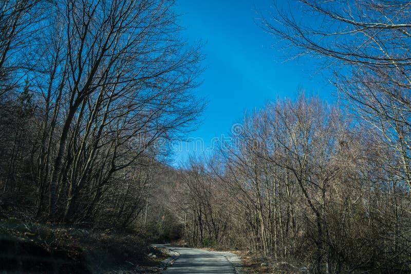 Route de montagne par le parc national de Lovcen photo stock