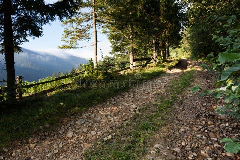 Route de montagne de saleté, paysage de campagne photo stock