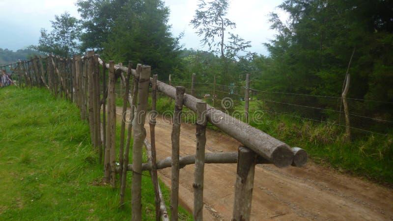 Route de nature photographie stock libre de droits