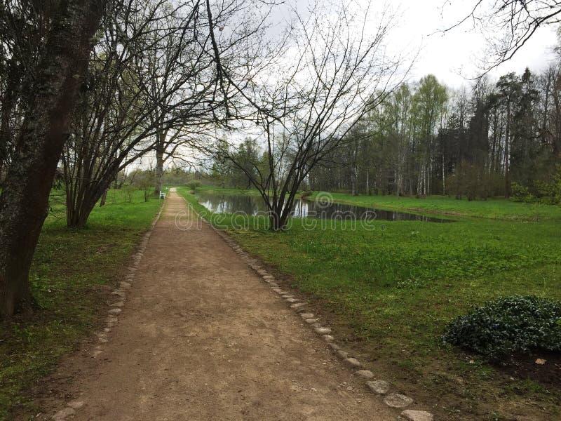 Route de parc image libre de droits