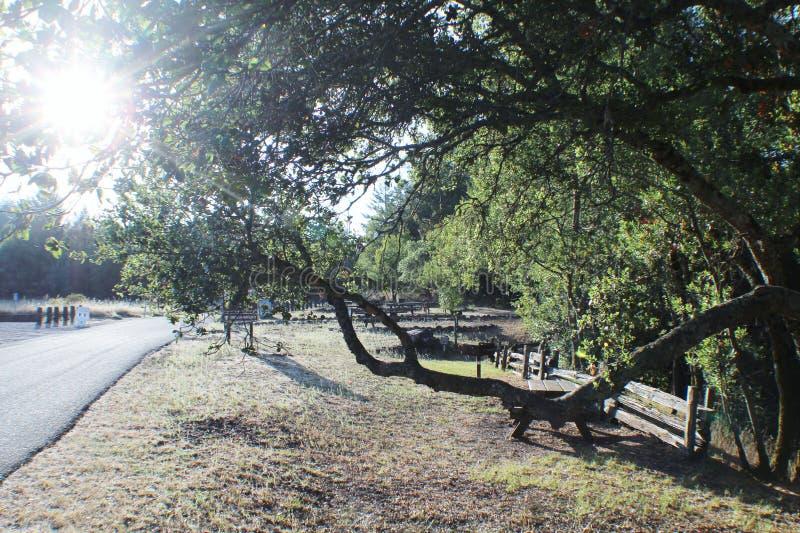 Route de parc d'état images stock