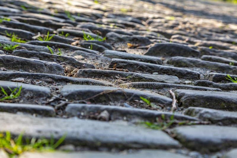 Route de pav? rond de la Flandre - d?tail photo libre de droits