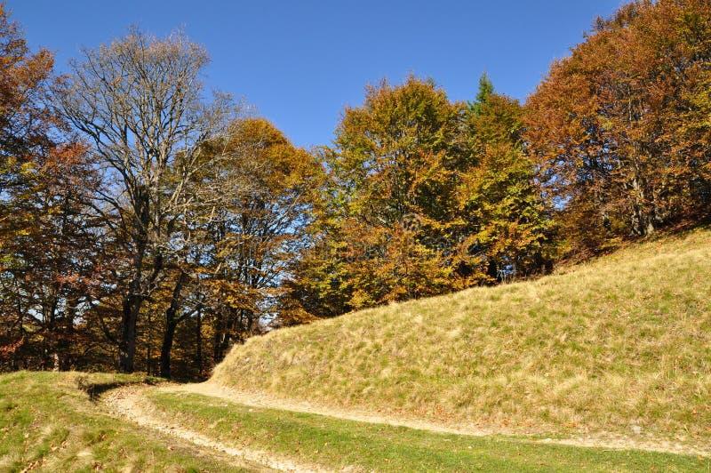 Route de saleté sur un flanc de coteau. images libres de droits