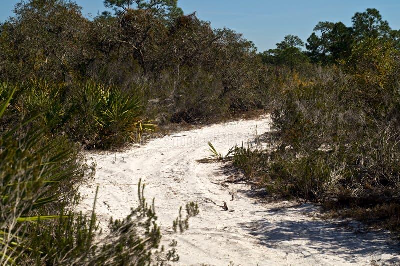 Route de Sandy en Floride tropicale images stock