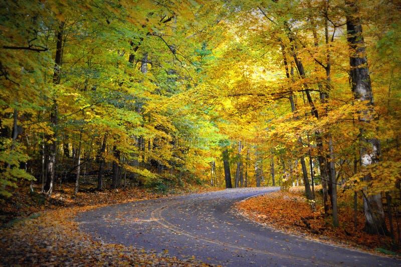 Route de serpent, couleurs d'automne, tourne-à-droite image libre de droits