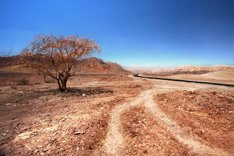 Route de Timna photos stock