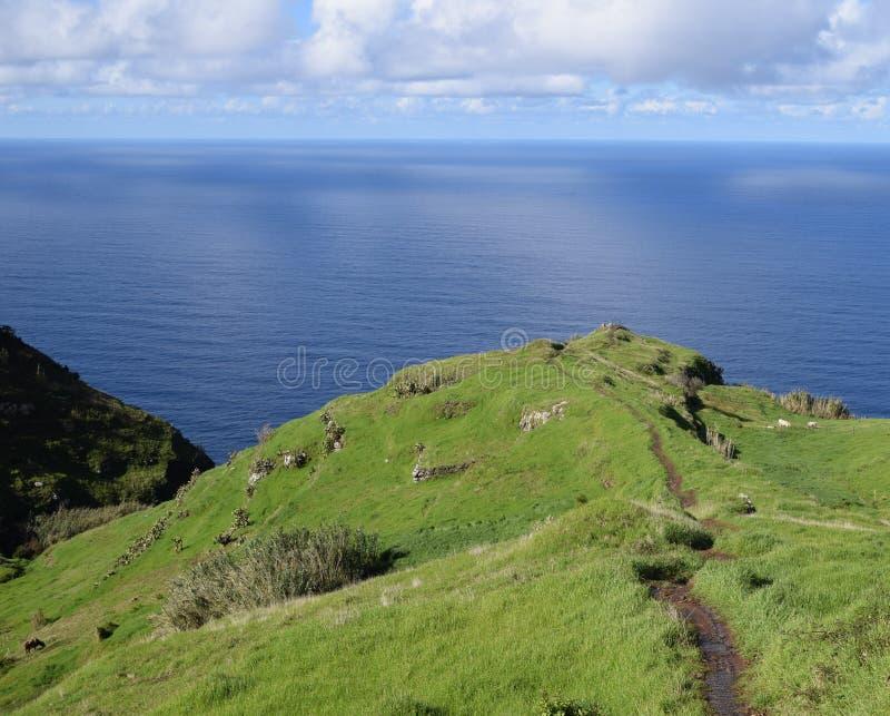 Route de vert de mer photo libre de droits