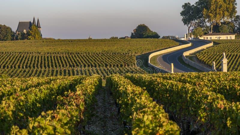 Route des Chateaux, Wijngaard in Medoc, amous wijnlandgoed van de wijn van Bordeaux royalty-vrije stock afbeeldingen