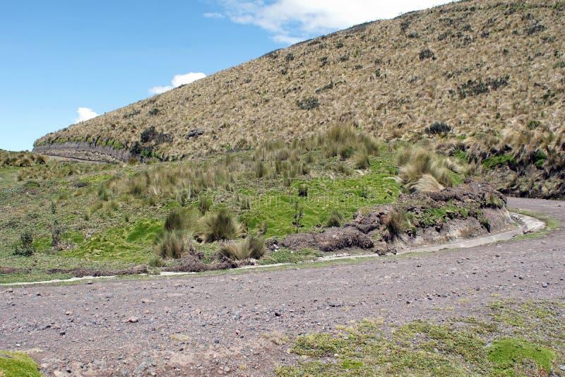 Route du côté d'une montagne dans la réservation écologique d'Antisana, Equateur photo libre de droits