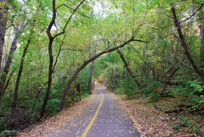 Route en automne photographie stock