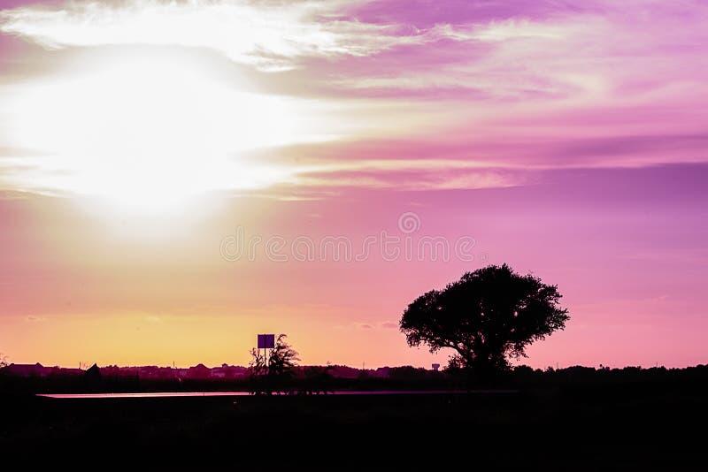 Route et arbre abandonnés au coucher du soleil image stock