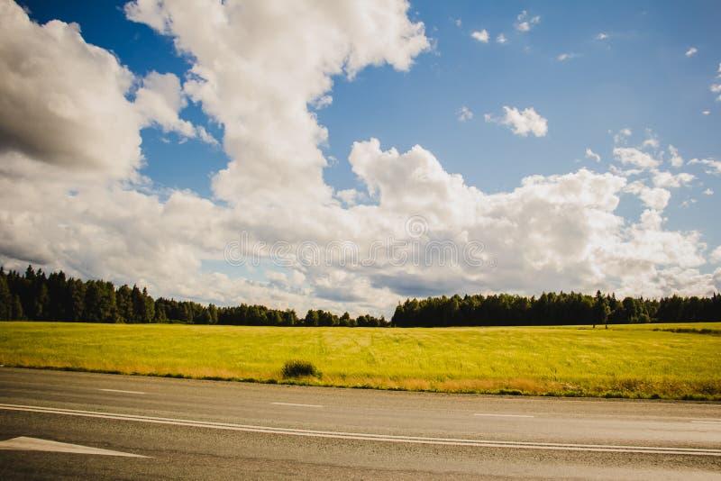 Route et le champ jaune image stock