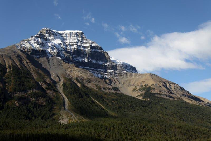 Route express d'Icefields d'â de stationnement national de Banff image libre de droits