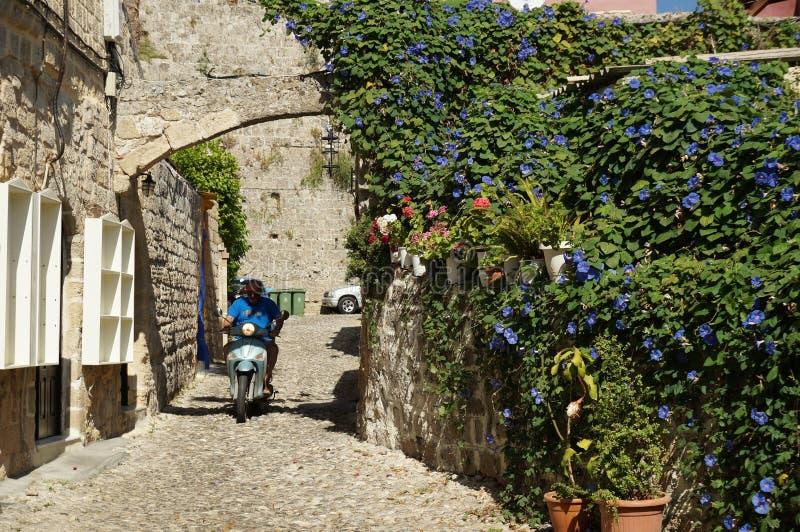 Route fleurie photo libre de droits
