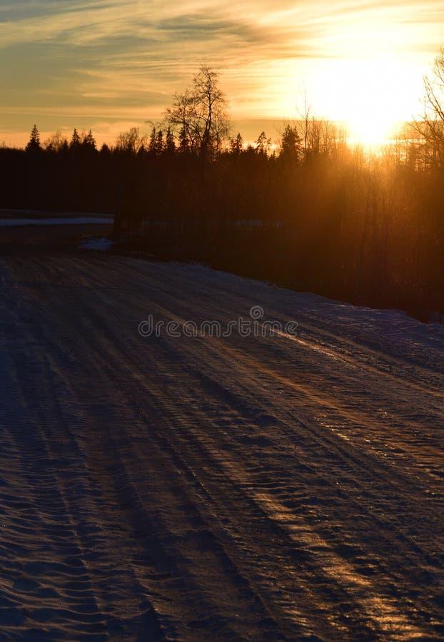 Route glaciale une soirée fraîche de ressort photo libre de droits