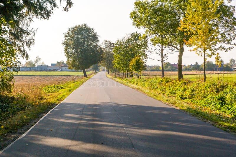 Route goudronnée au village en Pologne photos libres de droits