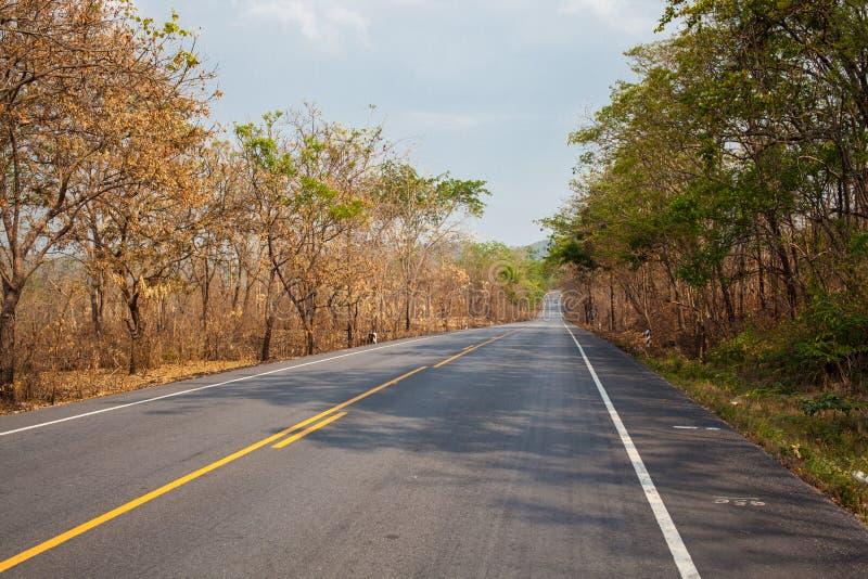 Route goudronnée dans thaïlandais photos stock
