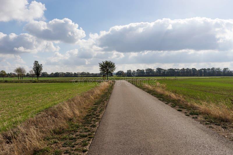 Route goudronnée droite Tournez droit ou parti photo libre de droits