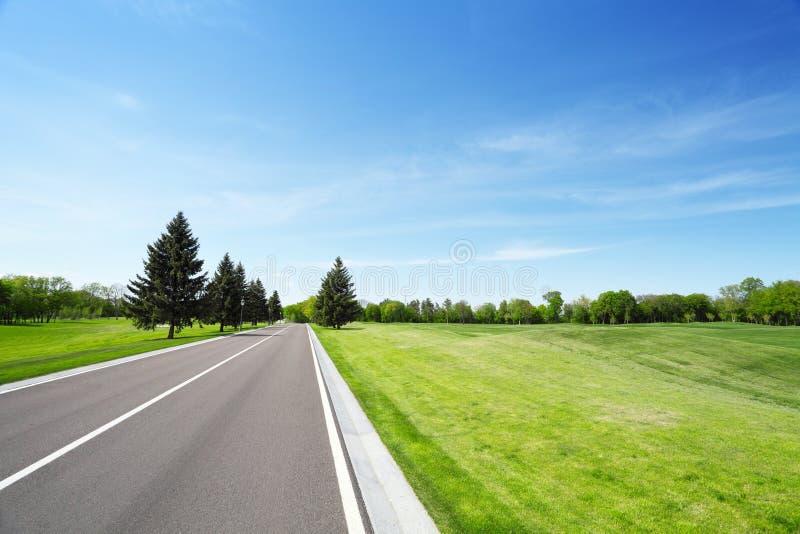 Route goudronnée et champ herbeux photographie stock libre de droits