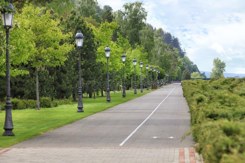 Route goudronnée et chemin droits de vélo à travers le parc avec beaucoup de belles lumières verticales de cru photos libres de droits