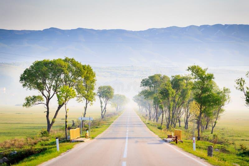 Route goudronnée un matin brumeux photographie stock libre de droits