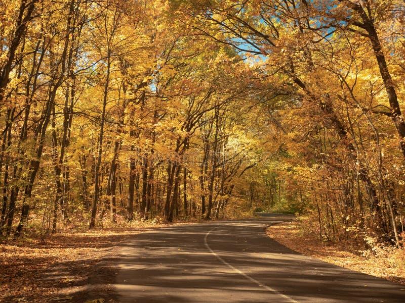 Route goudronnée venteuse dans le paysage de nature de forêt Forêt d'automne en octobre Les arbres avec les feuilles jaunes font  images stock