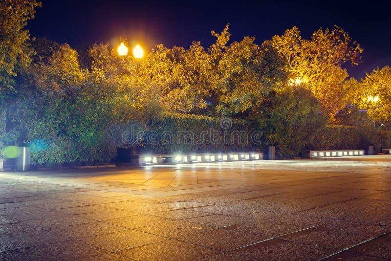 Route humide d'automne avec des lumières en parc le soir photographie stock