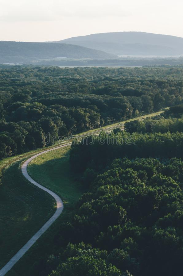 Route incurvée de bicyclette par la forêt image libre de droits