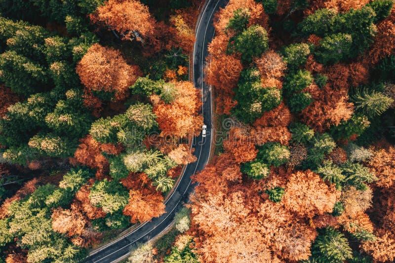 Route incurvée de enroulement dans la haute de forêt dans les montagnes en Th photos stock