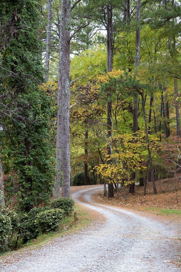 Route incurvée de gravier par les bois images stock