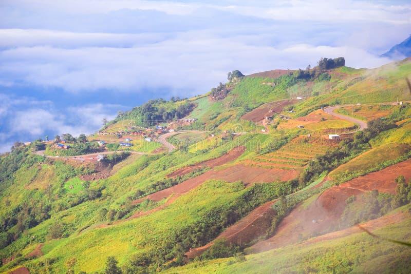 Route incurvée sur la montagne images libres de droits