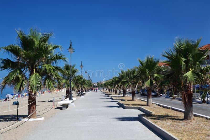 Route large près de plage avec des paumes photos libres de droits
