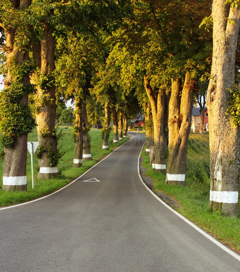 Route latérale de pays image libre de droits