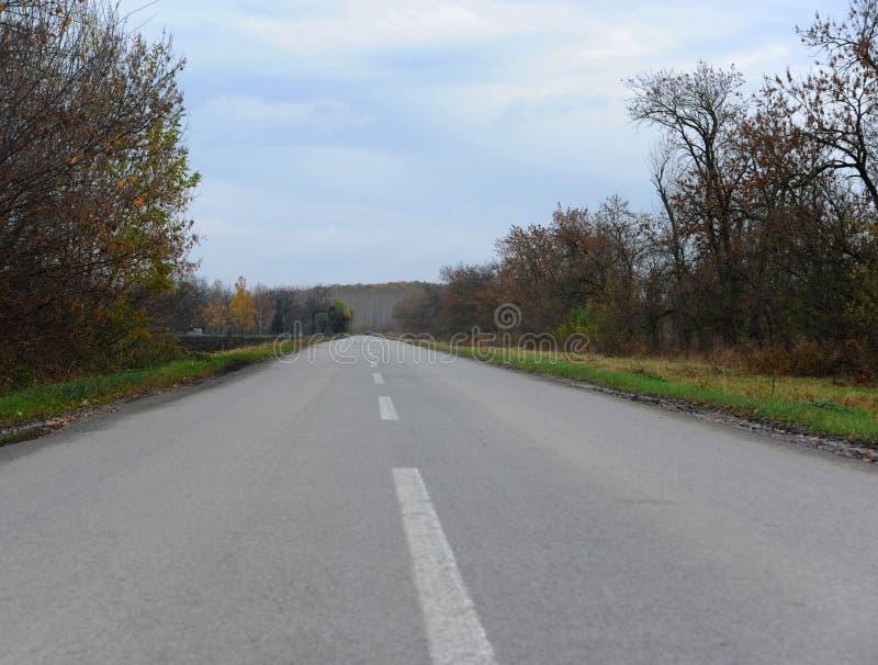 Route latérale de pays vide de conncrete photo libre de droits
