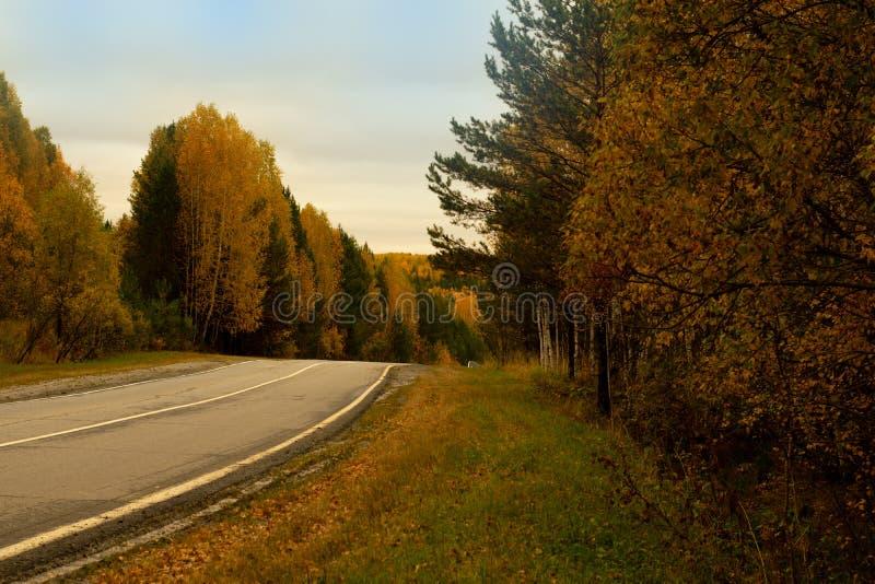 Route le long de la forêt d'automne dans la distance photographie stock