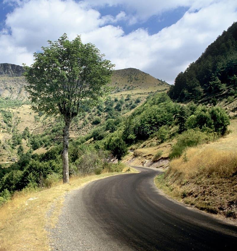 Route par des montagnes photo libre de droits