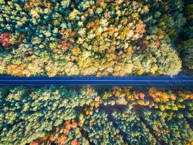 Route par la forêt colorée d'automne photo libre de droits