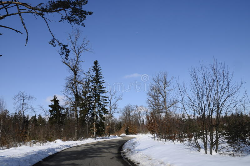 Route par la forêt neigeuse près de Cruseilles, Savoie, France image libre de droits