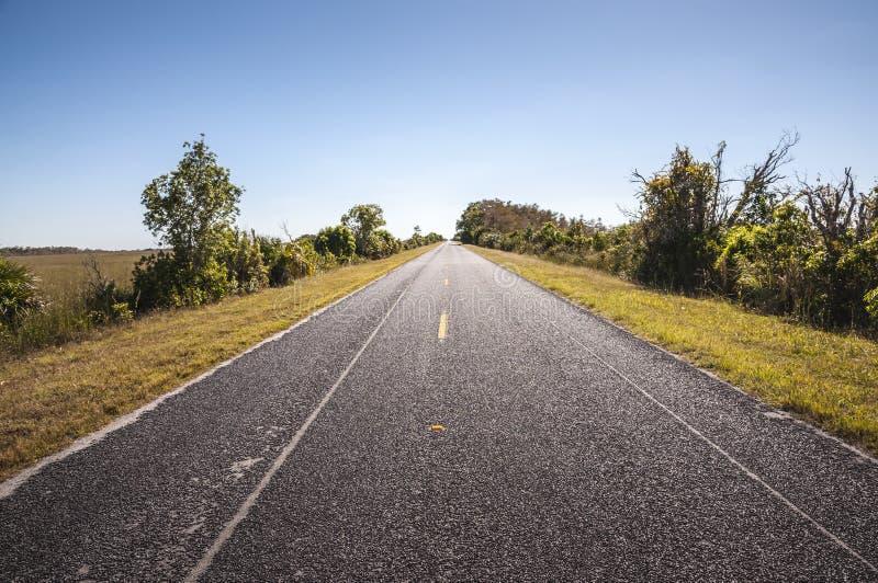 Download Route Par Le Parc National De Marais Photo stock - Image du extérieur, amérique: 45353356