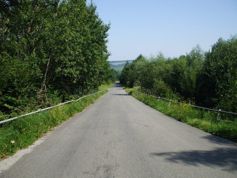 Route parmi l'herbe et les arbres image libre de droits