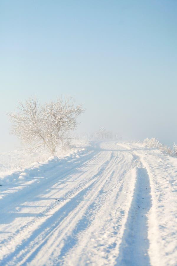 Route pellée vide de campagne de Milou un matin brumeux d'hiver au lever de soleil photographie stock libre de droits